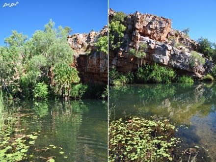 6 moonshine creek el questro (1)
