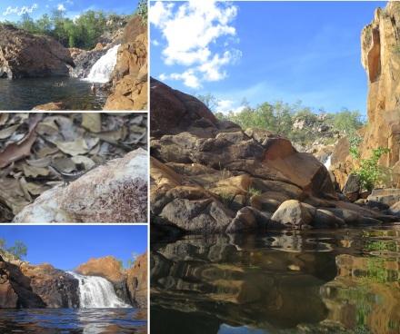 7 Upper pool edith falls (1)
