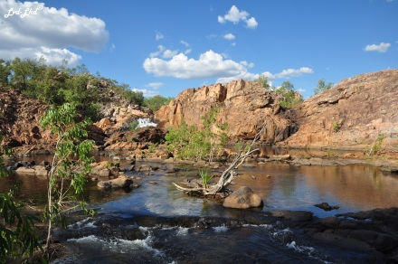 7a upper pool edith falls (4)