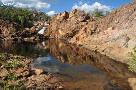 7a upper pool edith falls (5)