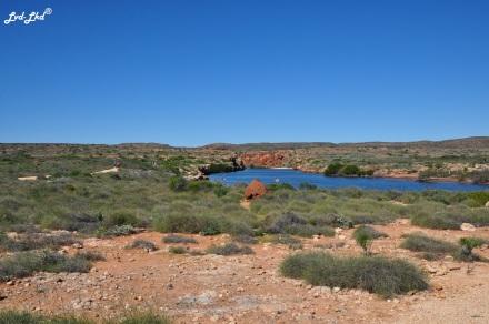 4 yardie creek (1)