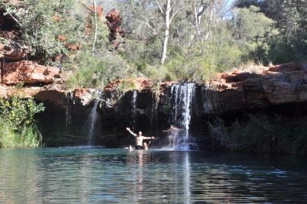 5 fernel pool (2)
