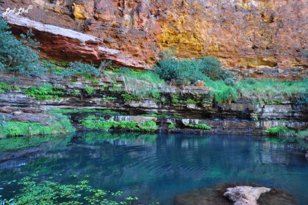 6 dales gorge (5)