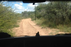 9 route khama rhino (1)