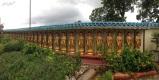 5 koke lok si temple (5)