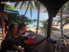 6 plage et corail (1)