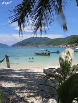 6 plage et corail (2)