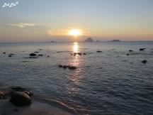8 turtle beach (1)