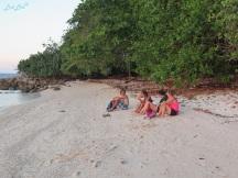 8 turtle beach (2)
